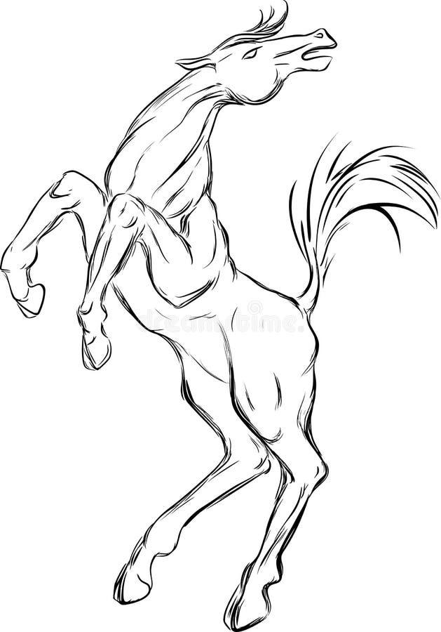 Skissa av häst royaltyfri illustrationer