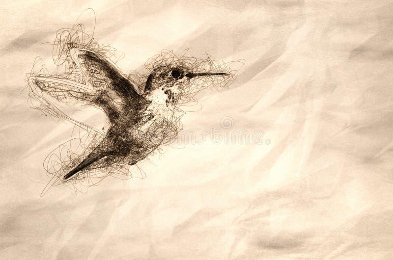 Skissa av lite den Rufous kolibrin som i flykten svävar djupt i skogen royaltyfria bilder