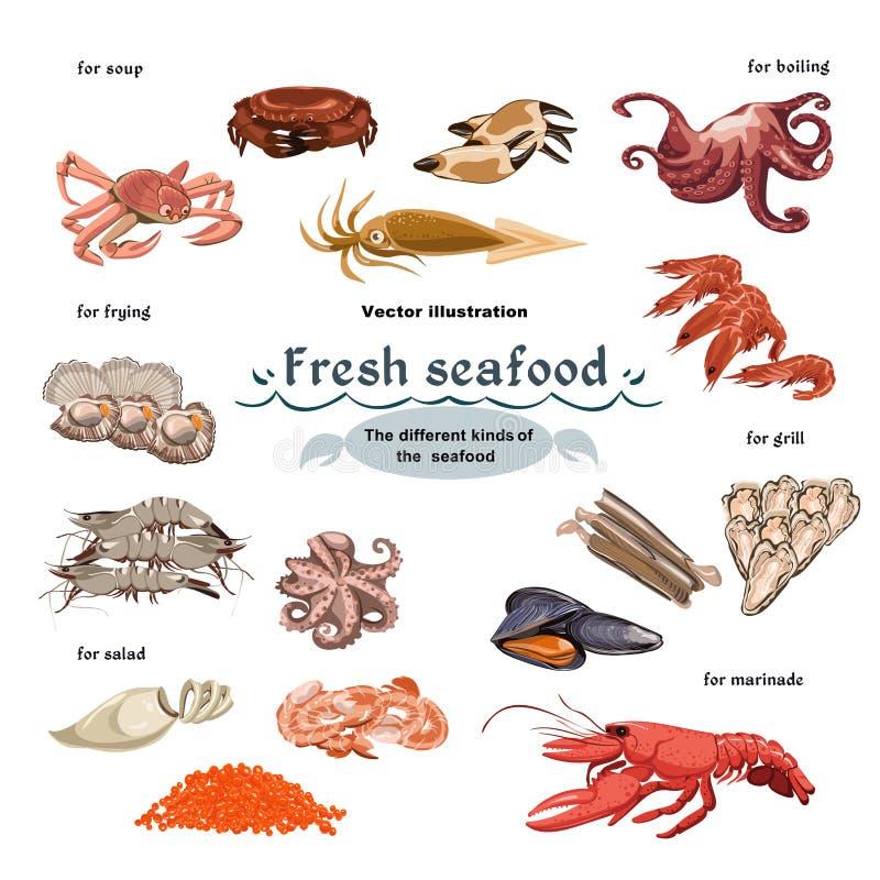 Skissa färgrika Marine Creatures Collection stock illustrationer