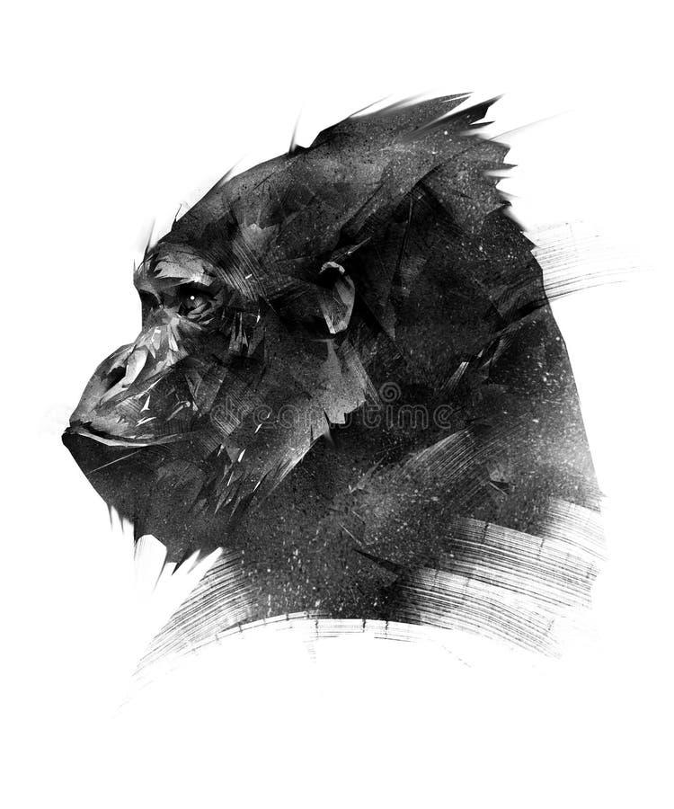 Skissa huvudet av en apagorilla på en vit bakgrund royaltyfri illustrationer