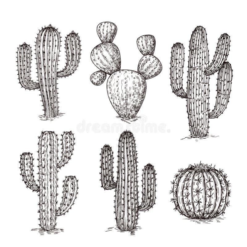 Skissa kaktuns Utdragna ökenkakturs för hand Tappning som inristar den västra mexikanska växtvektoruppsättningen stock illustrationer