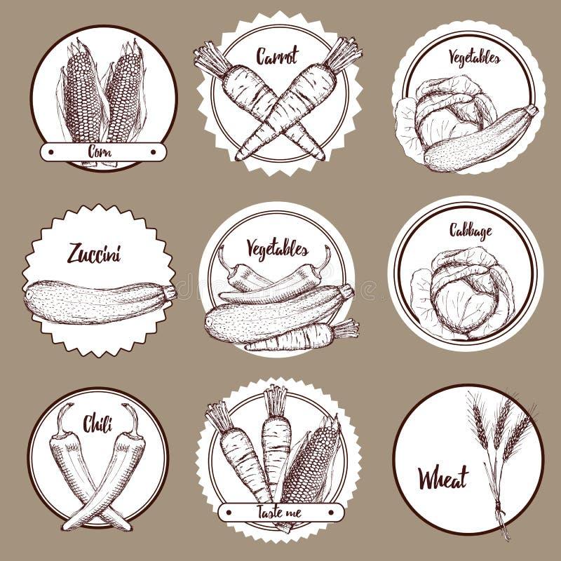 Skissa uppsättningen av grönsaklogotyper stock illustrationer