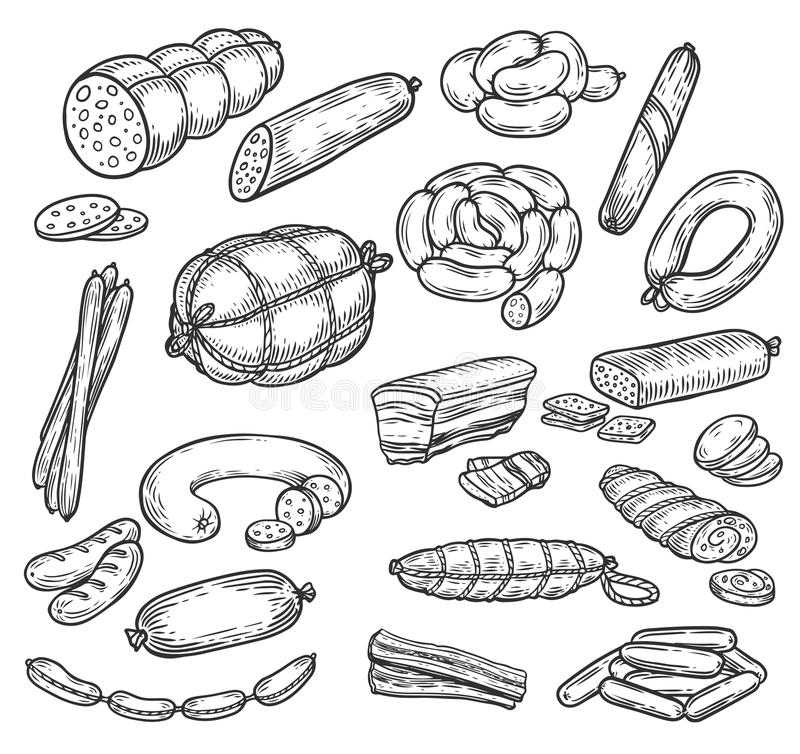 Skissar av korven och wursten, köttprodukter vektor illustrationer