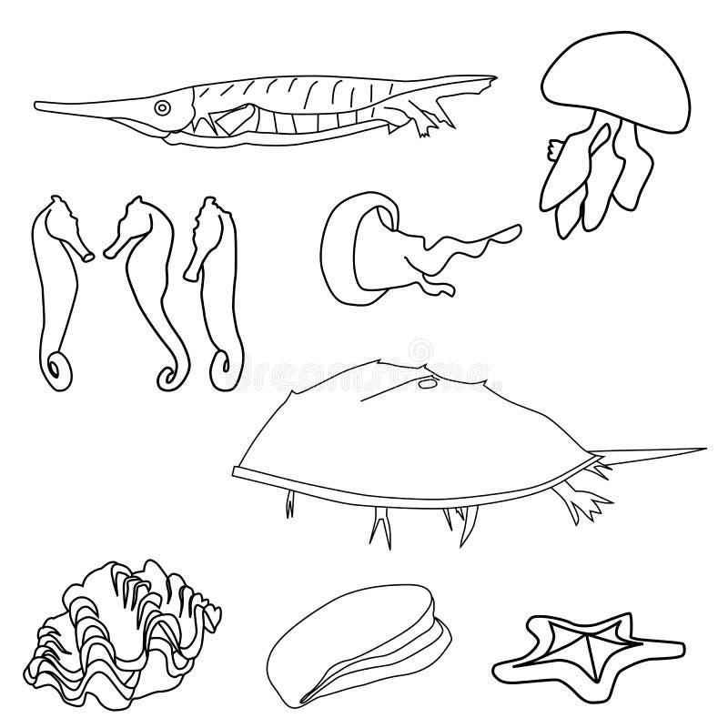 Skisserat havsliv vektor illustrationer
