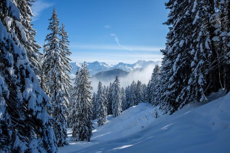Skitour i de Allgaeu fjällängarna nära Oberstdorf på en härlig blåsångaredag i vinter royaltyfria foton