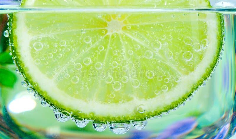 Skiva av limefrukt royaltyfria bilder