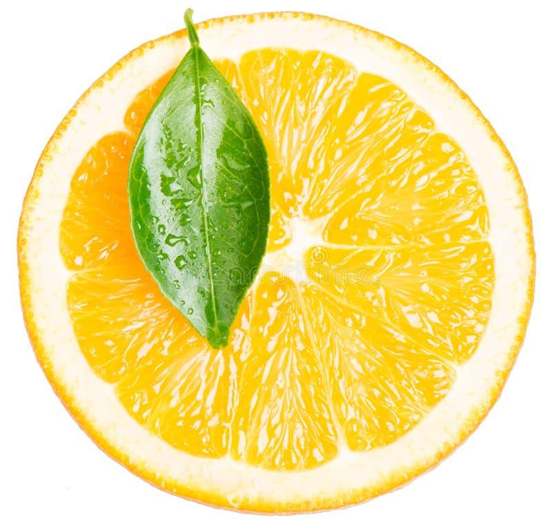 Skiva av orange frukt arkivfoto