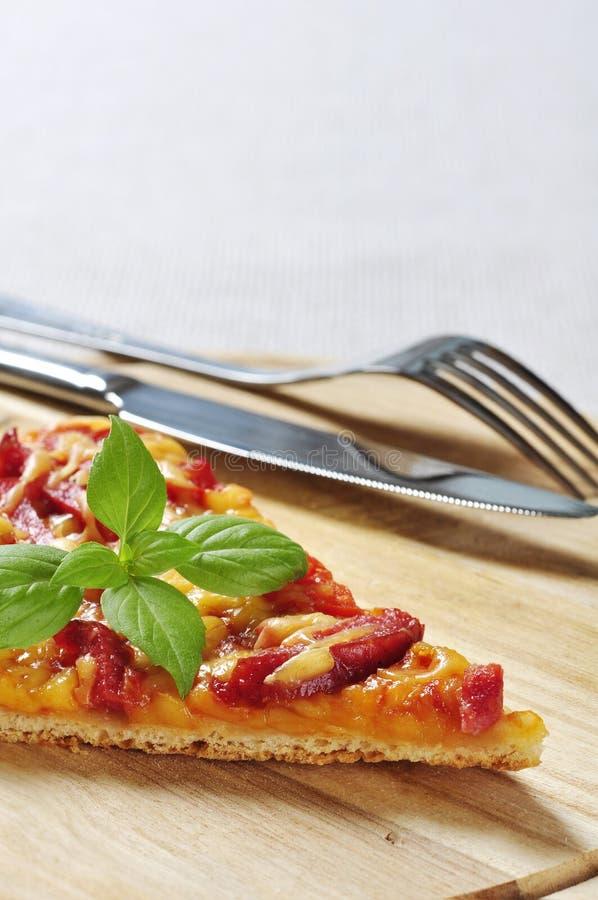 Download Skiva av pizza arkivfoto. Bild av läckert, snabbt, ätligt - 27276788
