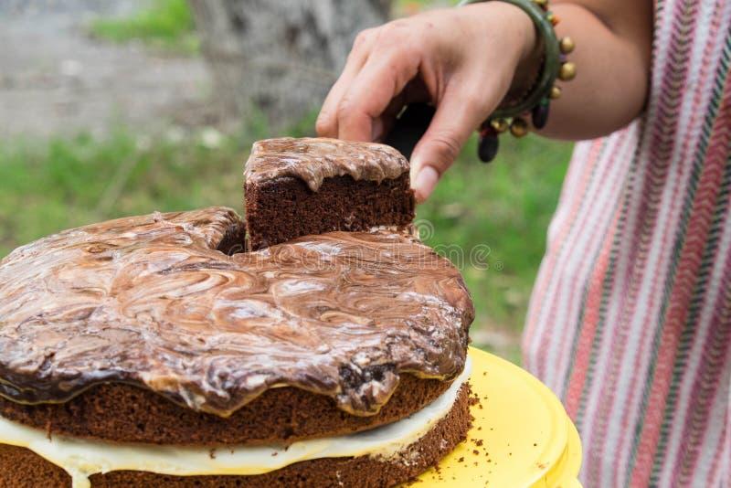 Skivad chokladlagerkaka royaltyfria foton