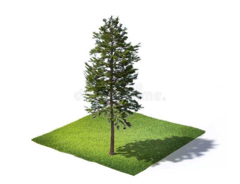 Skivad jordning med gräs och träd som isoleras på vit royaltyfri foto