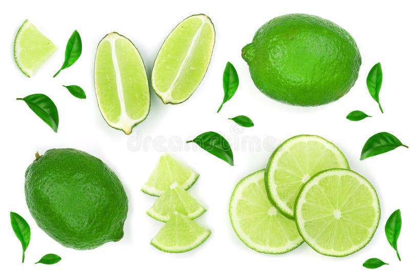 Skivad limefrukt med sidor som isoleras p? vit bakgrund Top besk?dar Lekmanna- modell f?r l?genhet royaltyfri fotografi