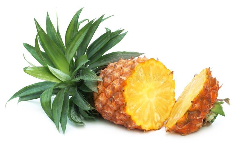 Skivad ny ananas royaltyfri bild