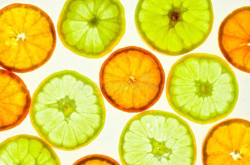 Skivad ny citron och apelsin fotografering för bildbyråer