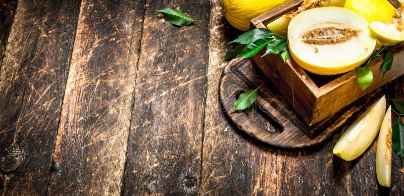 Skivad ny melon i den gamla asken arkivbild
