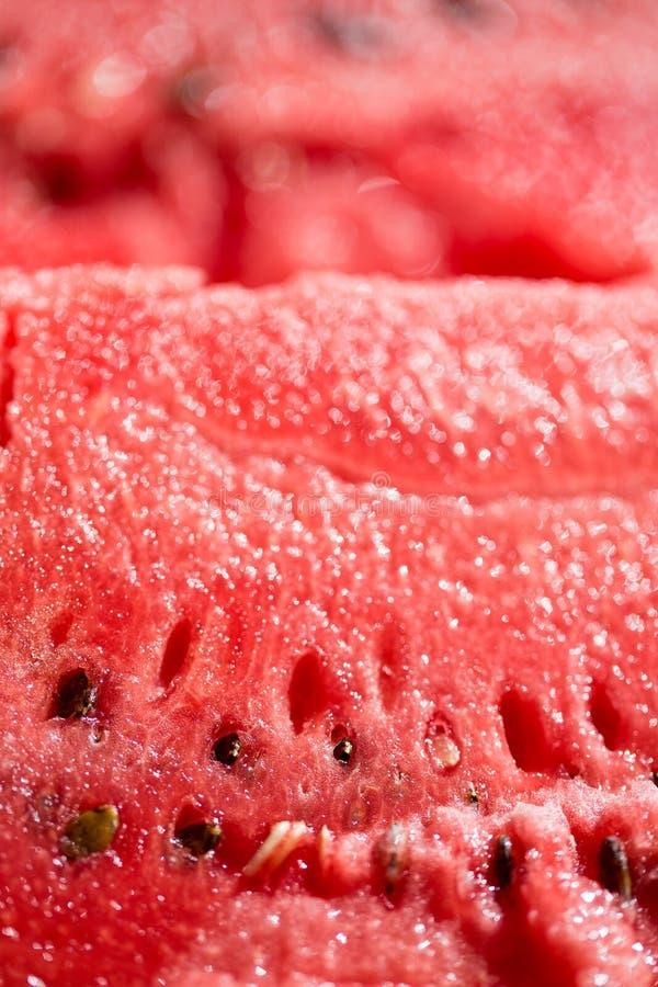 Skivad vattenmelon Selektivt fokusera royaltyfri bild