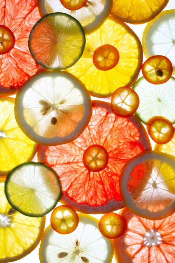 skivade citrusfrukter arkivbild