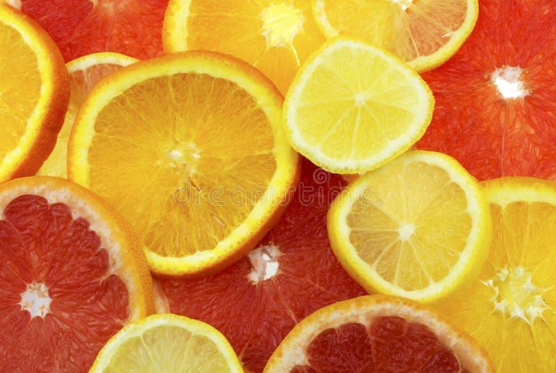 skivade citrusfrukter royaltyfria foton