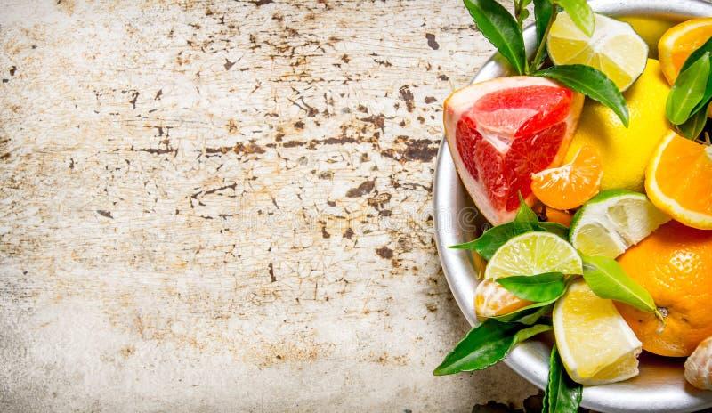 Skivade citrusfrukter - grapefrukt, apelsin, tangerin, citron, limefruktsidor i en kopp arkivfoton