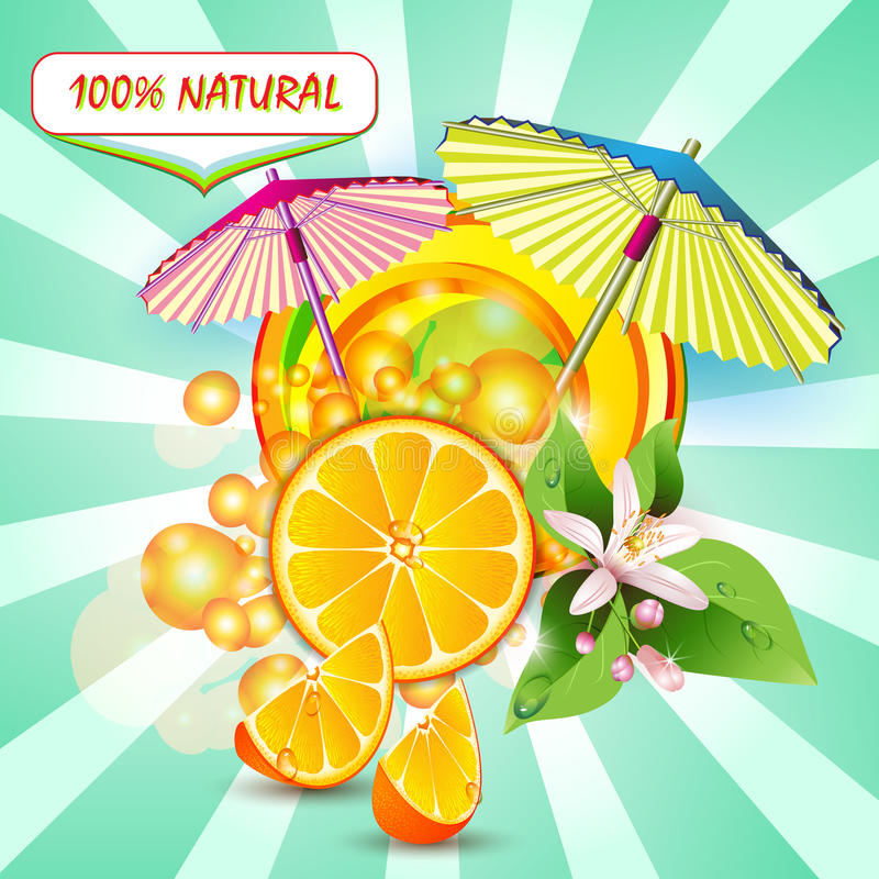 Skivar orangen med blommor stock illustrationer