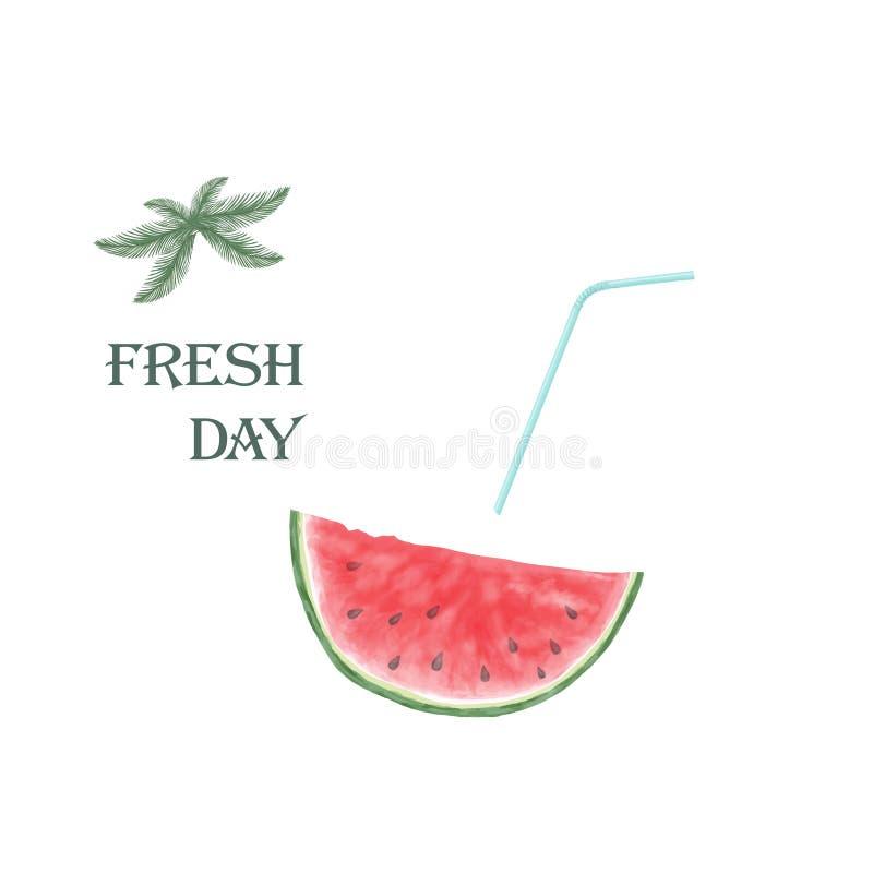 Skivat av vattenmelon som isoleras på vit bakgrund Ny frukt royaltyfri illustrationer