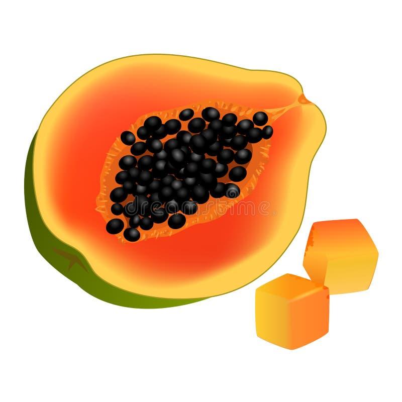 Skivat på halva och tärnad realistisk vektor för Papaya royaltyfri illustrationer