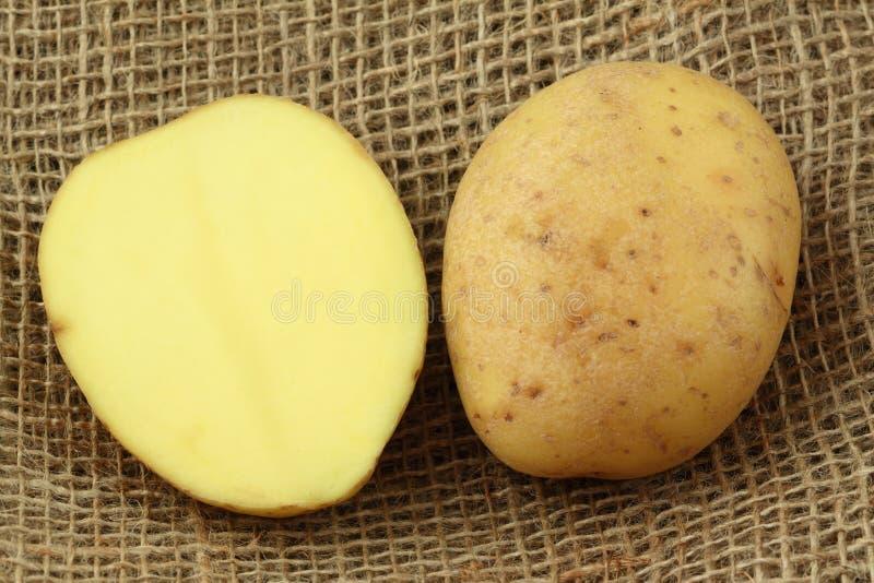 skivat plundra för potatoe royaltyfri foto