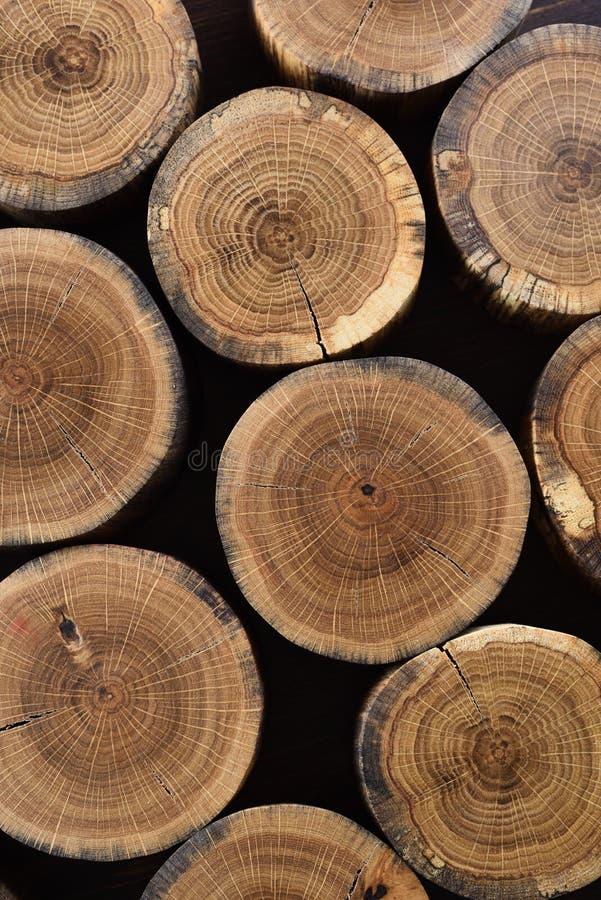 Skivor för trädstam med årliga cirklar och sprickor på svart backgrou arkivfoto