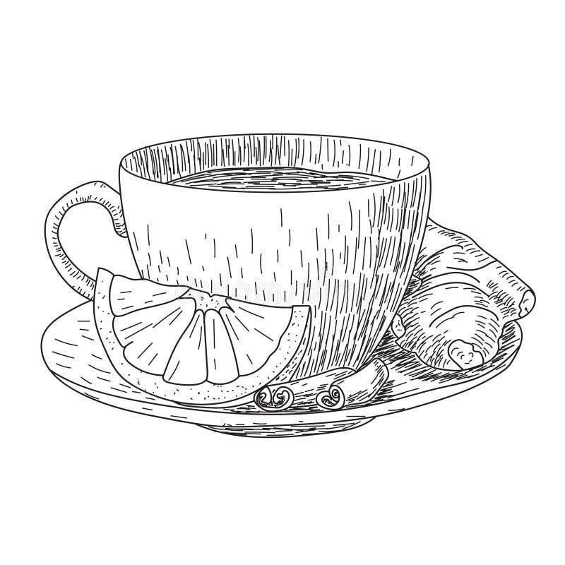 Skizze der Hand gezeichneten Schale mit Zitronen- und Ingwerbecher heißem Getränkkaffee, Tee usw. lokalisiert auf weißem Hintergr vektor abbildung