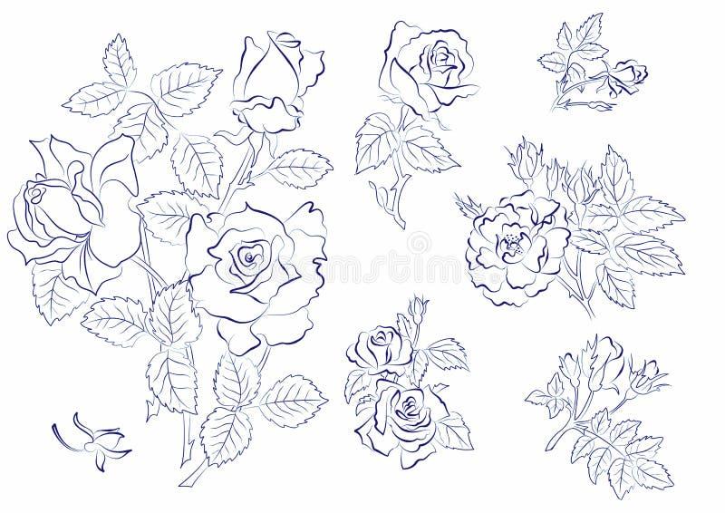 Skizze der Rosen stock abbildung