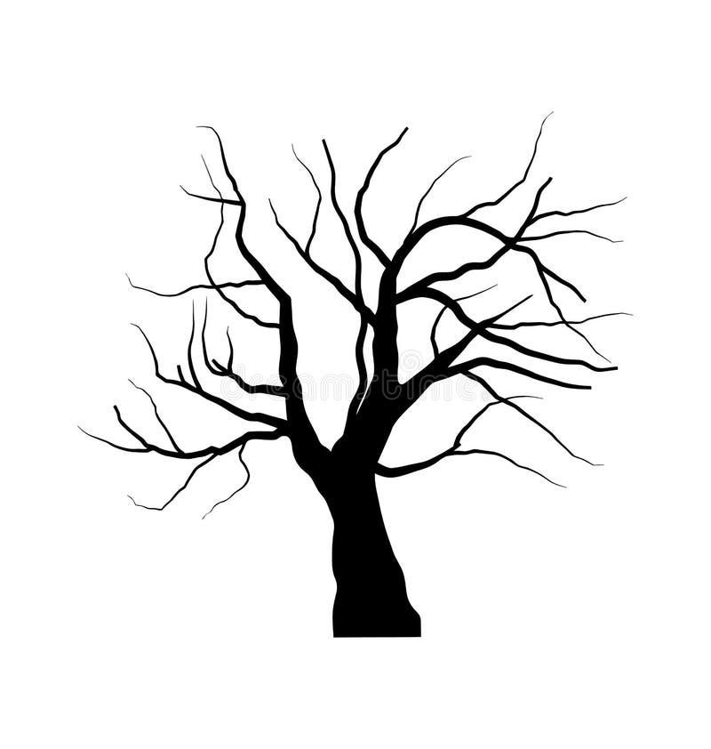 Skizze des toten Baums ohne Blätter, lokalisiert auf weißem backgroun vektor abbildung