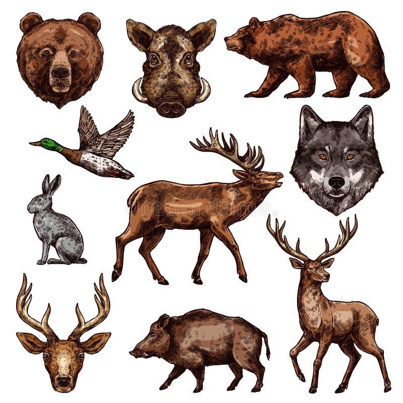 Skizze des wilden Tieres und des Vogels für die Jagd des Designs vektor abbildung