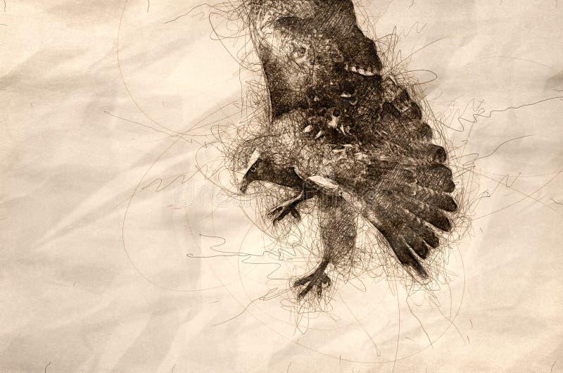 Skizze eines roten angebundenen Falken auf der Jagd stock abbildung