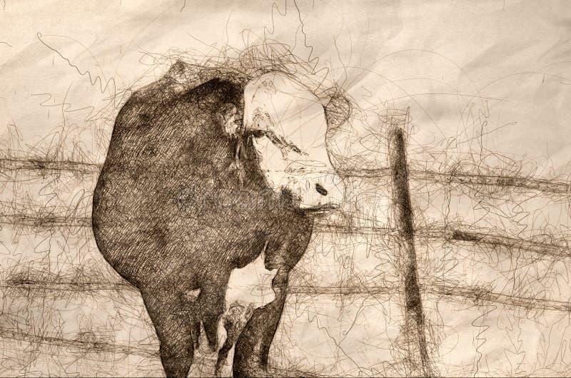 Skizze eines verärgerten Durchschnitts Stier und des bösen Blicks stock abbildung