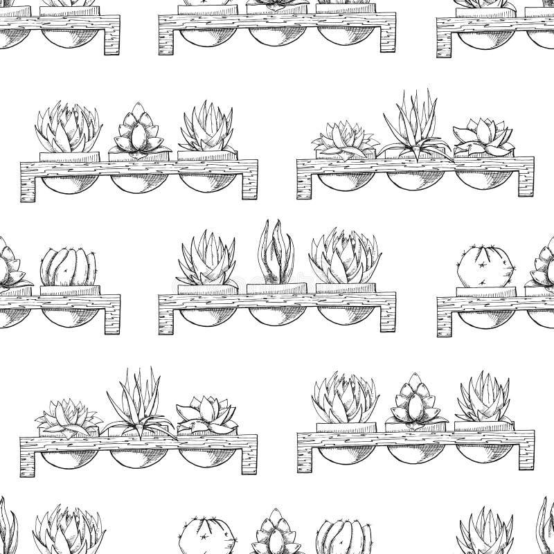 Skizze von drei Succulents in den Töpfen auf einem hölzernen Stand Vektorillustration einer Skizzenart Nahtloses Muster vektor abbildung