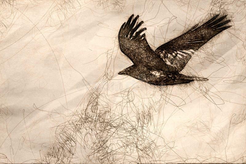 Skizze von gemeinen schwarzen Raven Flying Over der Schlucht-Boden stock abbildung