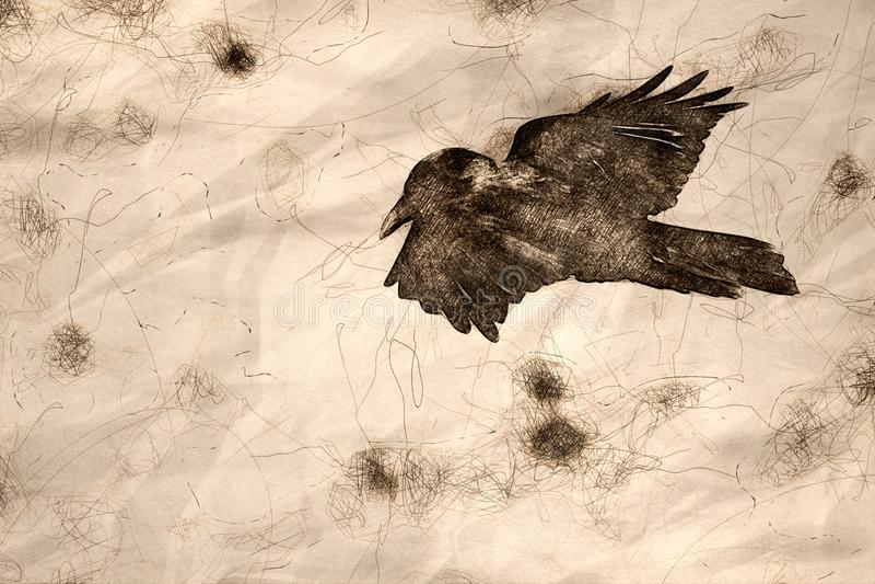 Skizze von gemeinen schwarzen Raven Flying Over der Schlucht-Boden lizenzfreie abbildung