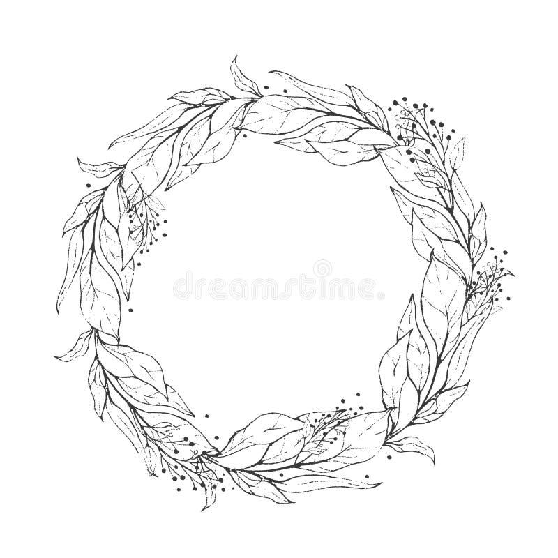 Skizzenkranzpflanzenblätter, zeichnender Natursatz Grafische botanische mit Blumenlinie gemaltes Kraut vektor abbildung