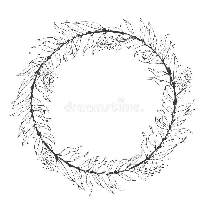 Skizzenkranzpflanzenblätter, zeichnender Natursatz Grafische botanische mit Blumenlinie gemaltes Kraut lizenzfreie abbildung