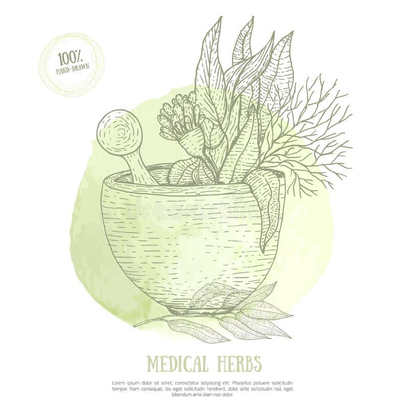 Skizzieren Sie Mörser mit frischem Krauteukalyptus auf grünem Aquarellfleck Organisches Heilungskonzept für ayurveda Vektor stock abbildung