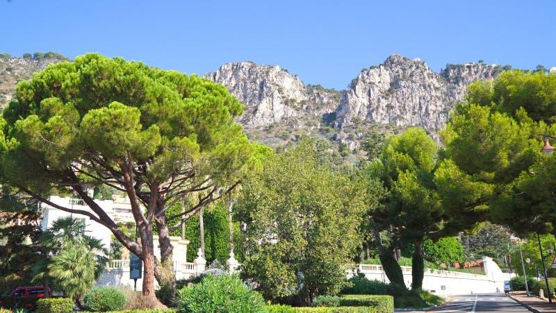 Skjul de Azur, Frankrike royaltyfria foton