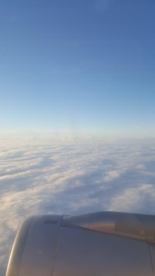 Skjuta i höjden till och med himlen royaltyfri foto
