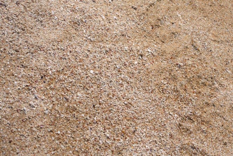 skjuten textur f?r bakgrundsstrand sand royaltyfria foton