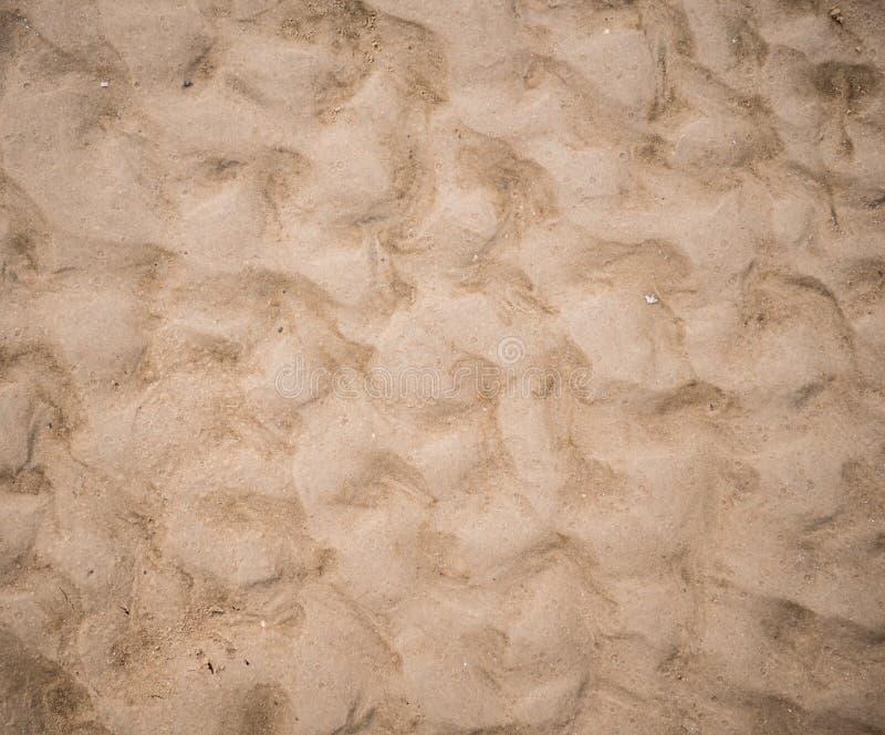 skjuten textur f?r bakgrundsstrand sand arkivfoton