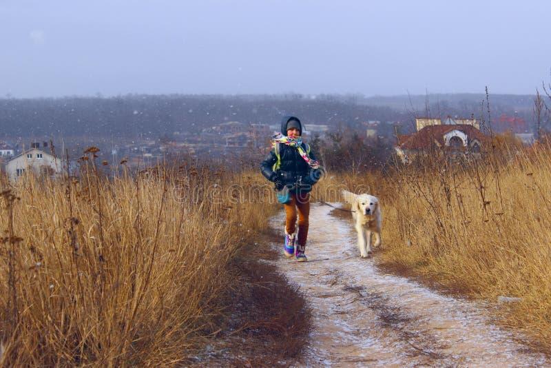 Skjutit av en hund utomhus- hund fotografering för bildbyråer
