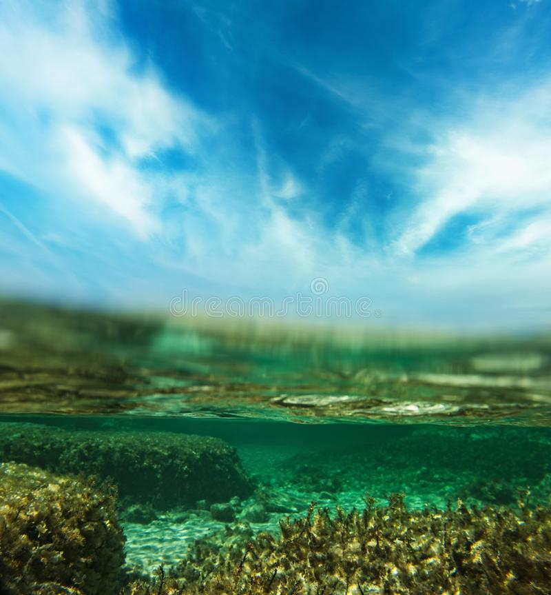 skjutit undervattens- royaltyfria bilder