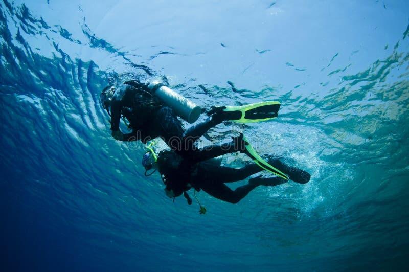 skjutit undervattens- för dykare scuba arkivfoto
