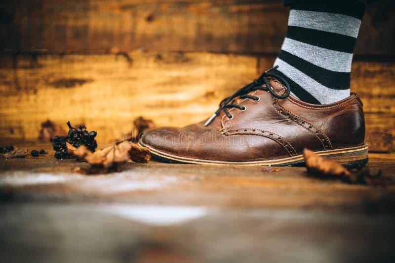 Sko för manmodebrunt på wood bakgrund med randiga sockor arkivfoto