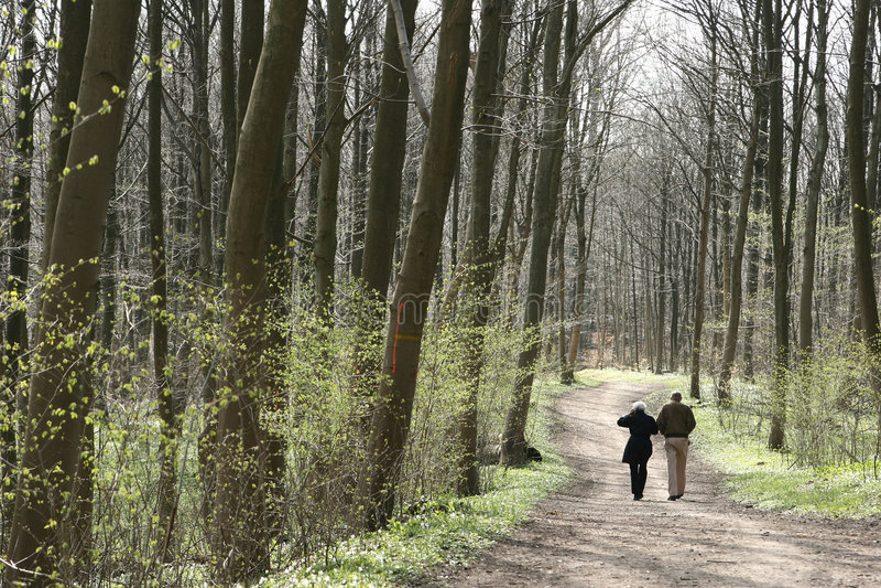 Download Skog fotografering för bildbyråer. Bild av hälsa, pensionerat - 995413