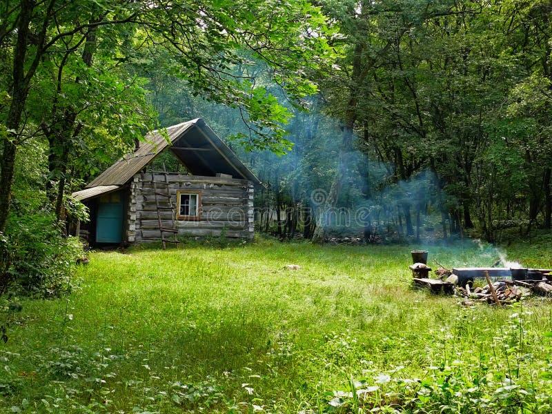 skog för 3 kabin arkivfoton