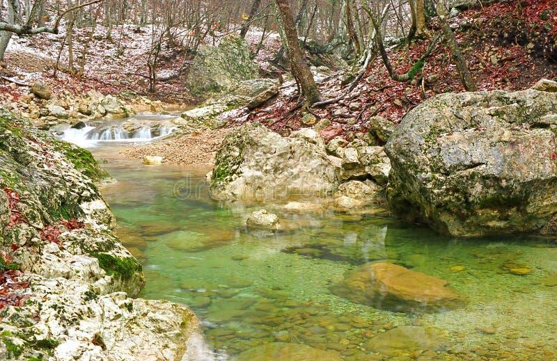 Skog för höst för bergflodib royaltyfria foton